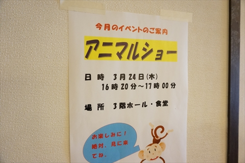 animal01_R.JPG